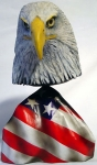 Bald Eagle Head 4lg2