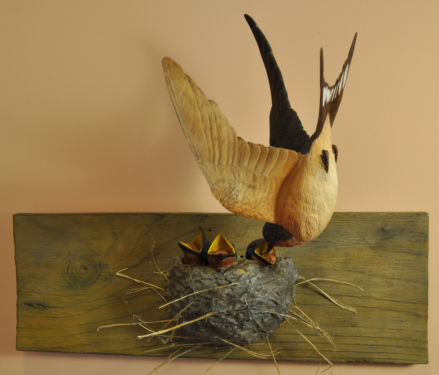 Barn swallow birds in wood