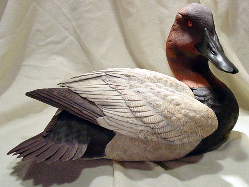 Canvasback Birds In Wood