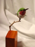 perchedhummingbird3